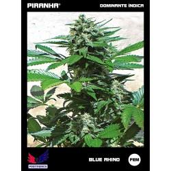 Blue Rhino (3u)