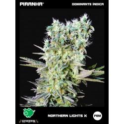 Northern Lights X (1u)