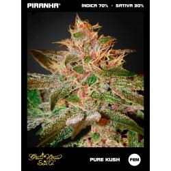Pure Kush (3u)