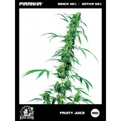Fruity Juice (10u)