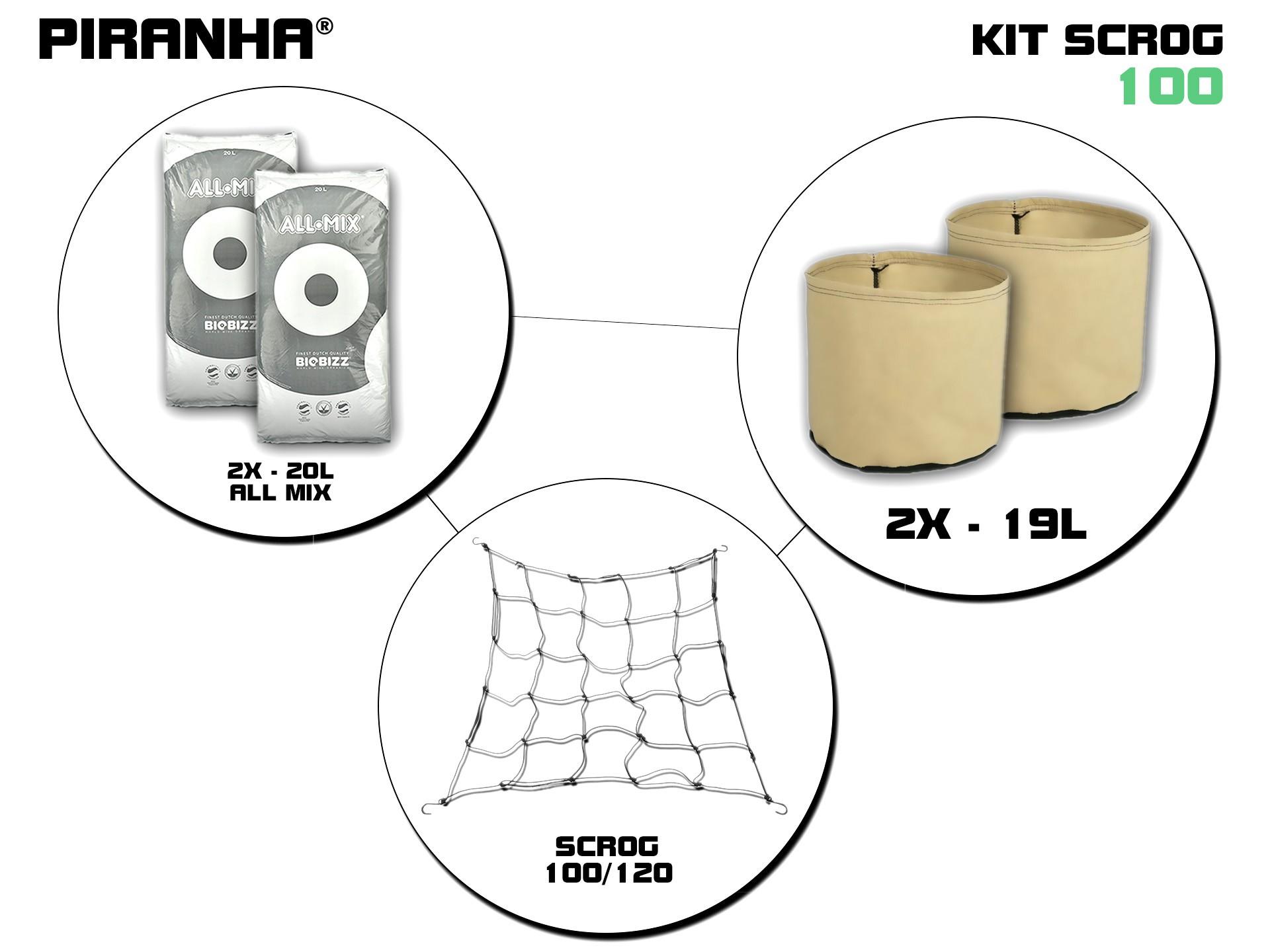 Kit SCROG 100