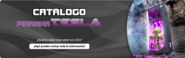 Catalogo LED Tesla